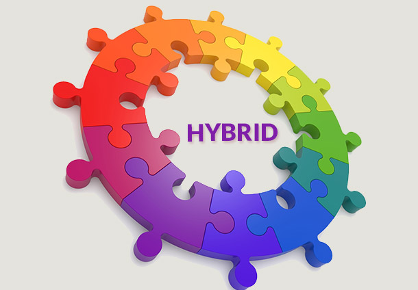 About Hybrid Plan MLM Software